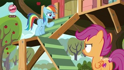Size: 1920x1080 | Tagged: safe, screencap, rainbow dash, scootaloo, pegasus, pony, the washouts (episode), apple tree, clubhouse, crusaders clubhouse, duo, female, filly, foal, mare, stairs, tree