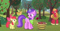 Size: 1210x632 | Tagged: safe, artist:fureox, artist:gwennie-chan, artist:matty4z, artist:razorbladetheunicron, artist:scrimpeh, artist:tempestwulf, amethyst star, apple bloom, applejack, big macintosh, sparkler, earth pony, pony, unicorn, lateverse, alternate universe, apple, apple orchard, apple tree, applebucking, bandana, blank flank, bow, cowboy hat, cutie mark, fanfic art, female, filly, foal, food, group, harness, hat, magic, male, mare, stallion, stetson, sweet apple acres, telekinesis, tree, unshorn fetlocks