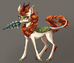 Size: 1600x1354 | Tagged: artist:weird--fish, autumn blaze, cloven hooves, colored hooves, female, flower, foal's breath, gray background, kirin, lidded eyes, looking at you, mouth hold, safe, simple background, solo, sounds of silence, spoiler:s08e23