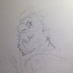 Size: 800x800 | Tagged: safe, artist:lilac, oc, oc only, oc:eid, avian, bird, griffon, birdified, clothes, facial markings, fluffy, griffon oc, male, scarf, sketch, solo, species swap, traditional art, wings