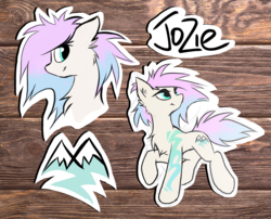 Size: 1942x1569 | Tagged: artist:kejifox, cutie mark, female, oc, oc:jozie, reference sheet, safe, wooden background