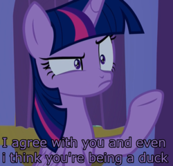 Size: 1126x1079 | Tagged: safe, edit, edited screencap, screencap, twilight sparkle, alicorn, pony, molt down, annoyed, cropped, female, frown, image macro, meme, op has a point (reaction image), op is a duck (reaction image), raised hoof, reaction image, solo, twilight sparkle (alicorn)