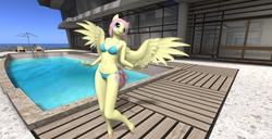 Size: 1920x986 | Tagged: anthro, artist:bangayo, belly button, bikini, clothes, fluttershy, midriff, safe, second life, sexy, solo, swimming pool, swimsuit, video in description