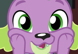 Size: 1041x720 | Tagged: cropped, cute, dog, equestria girls, equestria girls series, male, paws, reboxing with spike!, safe, screencap, spikabetes, spike, spike the regular dog, touching face