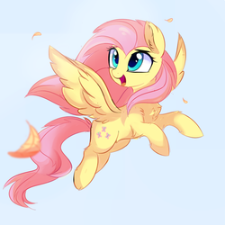 Size: 1986x1986 | Tagged: artist:aureai, chest fluff, cute, ear fluff, feather, female, fluffy, fluttershy, flying, gray background, happy, hoof fluff, leg fluff, looking up, mare, open mouth, pegasus, pony, safe, shoulder fluff, shyabetes, simple background, smiling, solo, spread wings, tongue out, windswept mane, wing fluff, wings