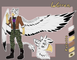 Size: 3200x2500 | Tagged: safe, artist:fizzwings, oc, oc:warren, anthro, hybrid, original species, zebragriff, beak, bomber jacket, boots, camouflage, clothes, impossibly large wings, jacket, leonine tail, reference sheet, shirt, shoes, stripes, talons, wings, zerb