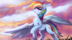 Size: 3200x1800 | Tagged: safe, artist:fidzfox, rainbow dash, pegasus, pony, chest fluff, cloud, detailed, female, grass, large wings, looking at you, looking down, looking down at you, low angle, mare, morning ponies, outdoors, raised hoof, sky, smiling, smirk, smug, solo, spread wings, standing, wallpaper, wings