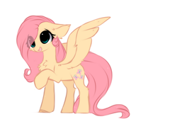 Size: 1345x996 | Tagged: safe, artist:little-sketches, fluttershy, pegasus, pony, cheek fluff, chest fluff, cute, ear fluff, eye clipping through hair, female, floppy ears, fluffy, hair over one eye, open mouth, raised hoof, shoulder fluff, shyabetes, simple background, smiling, solo, spread wings, standing, three quarter view, white background, wing fluff, wings