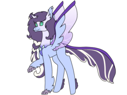 Size: 2740x2055 | Tagged: safe, artist:midnightamber, oc, oc only, hybrid, pony, braid, changeling horn, changeling hybrid, changeling wings, colored wings, feathered hooves, feathered wings, gradient chest, gradient eyes, gradient wings, hippogriff hybrid, hooves, hybrid wings, lifted leg, long mane, sideways glance, simple background, solo, spread wings, standing, transparent wings, white background