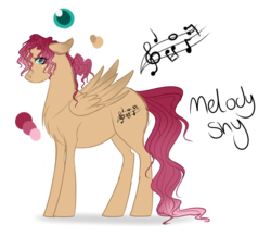 Size: 1147x1000 | Tagged: artist:chakraxx, female, filly, freckles, long tail, oc, oc:melody shy, oc only, offspring, parent:big macintosh, parent:fluttershy, parents:fluttermac, pegasus, pony, reference sheet, safe, simple background, solo, transparent background