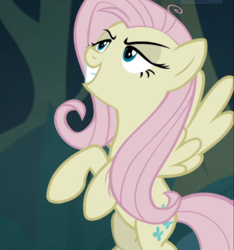 Size: 876x935 | Tagged: safe, screencap, mean fluttershy, pony, the mean 6, clone, cropped, evil grin, female, flying, grin, lidded eyes, smiling, solo