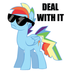 Size: 423x479 | Tagged: safe, artist:j-brony, artist:kayman13, artist:trotsworth, rainbow dash, pony, deal with it, glasses, rainbow blitz, rule 63, simple background, solo, sunglasses, swag, transparent background