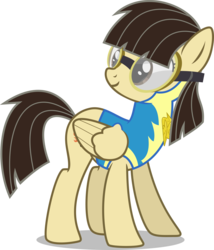 Size: 6000x6998 | Tagged: absurd res, alternate version, artist:chainchomp2, clothes, female, goggles, lead pony badge, mare, pegasus, pony, safe, simple background, solo, transparent background, uniform, vector, wild fire, wonderbolts academy, wonderbolt trainee uniform