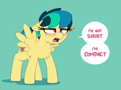Size: 1617x1200 | Tagged: safe, artist:shinodage, oc, oc only, oc:apogee, pegasus, pony, angry, blatant lies, blushing, butt freckles, chest fluff, chest freckles, compact, cute, diageetes, ear freckles, female, filly, floppy ears, freckles, frown, glare, green background, lidded eyes, ocbetes, open mouth, short, simple background, small, smol, solo, speech bubble, spread wings, wings