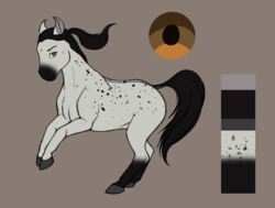 Size: 2550x1930 | Tagged: artist:blackblood-queen, dappled, earth pony, female, mare, oc, oc only, oc:saanvi, pony, reference sheet, saddle arabian, safe, simple background, solo