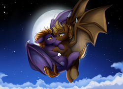Size: 2494x1816 | Tagged: safe, artist:pridark, oc, oc only, oc:nova nightstar, unnamed oc, bat pony, bat pony oc, commission, female, full moon, looking at each other, male, moon, night, oc x oc, shipping, stars, straight