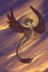 Size: 864x1308 | Tagged: artist:quadrog, cute, female, flying, gabby, gabbybetes, griffon, safe, solo, spread wings, wings