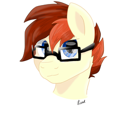 Size: 3000x3000   Tagged: safe, artist:leadthepone, oc, oc:lead pone, earth pony, pony, bust, glasses, male, portrait, stallion