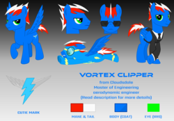 Size: 3000x2083 | Tagged: artist:rd4590, clothes, cutie mark, looking at you, necktie, oc, oc:vortex clipper, pegasus, pony, reference sheet, safe, simple background, suit, sunglasses, uniform, vector, wonderbolts uniform