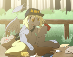 Size: 1280x1000 | Tagged: accident, artist:wicketrin, chest fluff, crying, cute, derp, derpabetes, derpy hooves, feather, female, hoof hold, leg fluff, letter, mailmare, mare, open mouth, pegasus, pony, s, sack, sad, sadorable, safe, sitting, solo, wing fluff