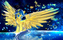 Size: 1224x792 | Tagged: artist:aquagalaxy, oc, oc:jediel, oc only, pegasus, pony, reflection, safe, solo, spread wings, wings