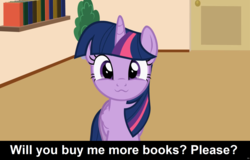 Size: 1920x1227 | Tagged: safe, artist:forgalorga, twilight sparkle, alicorn, pony, :3, book, bookhorse, bookshelf, bronybait, caption, cs captions, cute, female, looking at you, mare, solo, that pony sure does love books, twiabetes, twilight sparkle (alicorn), your little pets