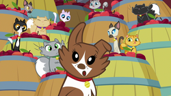 Size: 1280x720   Tagged: safe, screencap, winona, cat, dog, going to seed, spoiler:s09e10, apple, barrel, confused, food