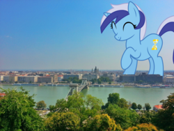 Size: 3264x2448 | Tagged: budapest, building, city, female, giantess, giant pony, highrise ponies, hungary, irl, macro, minuette, photo, ponies in real life, pony, safe