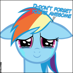 Size: 4000x4000 | Tagged: safe, artist:mrkat7214, rainbow dash, pegasus, pony, absurd resolution, closed mouth, crying, cute, daaaaaaaaaaaw, dashabetes, dialogue, end of ponies, feels, female, floppy ears, happy, looking at you, mare, puppy dog eyes, sad, sadorable, simple background, smiling, smiling at you, solo, stuttering, sweet dreams fuel, talking to viewer, tears of joy, teary eyes, white background