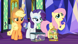 Size: 1366x768 | Tagged: applejack, bird, box, cage, door, fluttershy, glass, hummingbird, miniature, rarity, safe, screencap, sewing, sewing machine, spider, spider web, spoiler:s09e26, star spider, the last problem