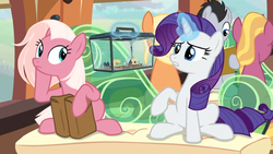 Size: 1366x768 | Tagged: amber grain, bag, box, earth pony, female, fire flicker, friendship student, fuchsia frost, glass, levitation, lucky clover, magic, male, mare, miniature, pony, rarity, saddle bag, safe, screencap, seat, sewing machine, spider, spider web, spoiler:s09e26, stallion, star spider, telekinesis, the last problem, train, travel bag, unicorn