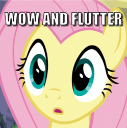 Size: 697x699 | Tagged: caption, cropped, edit, edited screencap, fake it 'til you make it, fluttershy, image macro, pun, safe, screencap, solo, text, visual pun, wow