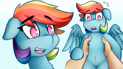 Size: 3840x2160 | Tagged: safe, artist:anon_1515, rainbow dash, human, pegasus, pony, alternate hairstyle, belly button, belly fluff, blushing, chest fluff, cute, cute little fangs, dashabetes, eyebrows, fangs, featureless crotch, floppy ears, freckles, frown, high res, holding a pony, offscreen character, simple background, smiling, spread wings, startled, surprised, thigh gap, wings