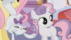 Size: 488x275 | Tagged: cat, cute, diasweetes, female, filly, fluttershy, mare, opalescence, pegasus, pony, safe, scratching, screencap, stare master, sweetie belle, unicorn