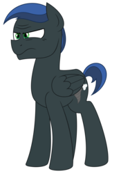 Size: 3281x4688 | Tagged: artist:besttubahorse, male, oc, oc:derecho murus, oc only, pegasus, safe, simple background, solo, stallion, transparent background, unhappy, vector