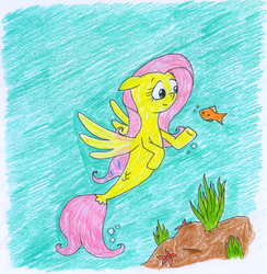 Size: 966x988 | Tagged: artist:rizdub, fluttershy, safe, seaponified, seapony fluttershy, seapony (g4), solo, species swap, traditional art