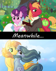 Size: 1280x1616 | Tagged: a happy ending for marble pie, appleloosa, artist:dreamscapevalley, big macintosh, braeble, braeburn, clothes, courtship, dress, earth pony, edit, edited screencap, female, good end, male, marble pie, mare, marriage, meanwhile, pony, ponyville, safe, screencap, shipping, shirt, spoiler:s09e23, stallion, straight, sugar belle, sugarmac, the big mac question, unicorn, vest, wedding, wedding dress, wholesome