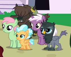 Size: 399x322 | Tagged: safe, screencap, gio, mallow flower, spearmint gust, sunspray, yarborough, griffon, hippogriff, pegasus, pony, unicorn, yak, the last problem, animation error, background griffon, background hippogriff, background pony, calf, chickub, cropped, female, filly, fledgeling, foal, yak calf