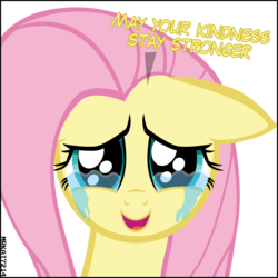 Size: 4000x4000 | Tagged: absurd resolution, artist:mrkat7214, crying, cute, daaaaaaaaaaaw, dialogue, end of ponies, feels, female, floppy ears, fluttershy, looking at you, mare, pegasus, pony, sad, sadorable, safe, shyabetes, simple background, solo, talking to viewer, tears of joy, teary eyes, vector, white background
