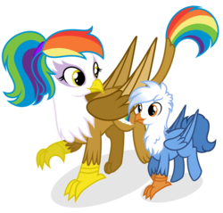 Size: 1280x1224 | Tagged: artist:shizow, brother and sister, female, griffon, hippogriff, hybrid, interspecies offspring, magical lesbian spawn, male, next generation, oc, oc:gren, oc:rainbow feather, offspring, parent:gilda, parent:rainbow dash, parents:gildash, safe, siblings