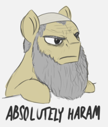 Size: 942x1100 | Tagged: absolutely disgusting, absolutely haram, artist:t72b, beard, derpibooru exclusive, disappointed, earth pony, facial hair, frown, hat, igneous rock pie, islam, meme, ponified meme, pony, saddle arabian, safe, solo