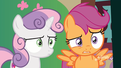 Size: 1920x1080 | Tagged: safe, screencap, scootaloo, sweetie belle, pegasus, pony, unicorn, the big mac question, spoiler:s09e23, confused, duo, female, filly, furrowed brow, grimace, gritted teeth, raised eyebrow, reaction image, spread wings, varying degrees of do not want, what has been seen, wings