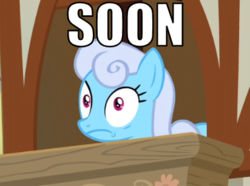 Size: 412x307 | Tagged: safe, edit, edited screencap, screencap, linky, shoeshine, pony, the big mac question, cropped, female, mare, meme, scared, shoeshine's window, solo, soon