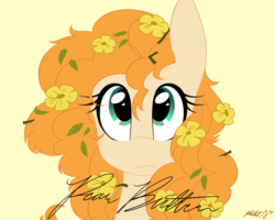 Size: 900x720 | Tagged: safe, artist:pastel-script, pear butter, earth pony, pony, bust, buttercup, cute, female, flower, flower in hair, mare, pearabetes, portrait, signature, simple background, solo, yellow background