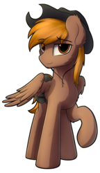Size: 996x1728 | Tagged: safe, artist:av-4, artist:avastin4, oc, oc only, oc:calamity, pegasus, pony, fallout equestria, cowboy hat, dashite, fanfic, fanfic art, hat, hooves, looking at you, male, raised hoof, saddle bag, simple background, smiling, solo, stallion, transparent background, wings