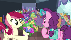 Size: 1920x1080 | Tagged: coin, flower, magic, pony, roseluck, safe, screencap, spoiler:s09e23, sugar belle, the big mac question