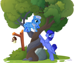 Size: 3190x2655 | Tagged: artist:unichan, bird house, blue coat, bush, clothes, hat, intertwined trees, leaves, looking at each other, nurse hat, oc, oc:mecha-den, oc only, oc:skyberry delight, pegasus, rock, safe, scarf, simple background, smiling, transparent background, tree, wings, ych result