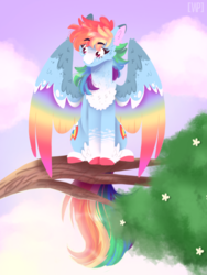 Size: 768x1024 | Tagged: artist:wanderingpegasus, blaze (coat marking), cheek fluff, chest fluff, cloud, coat markings, colored hooves, colored wings, cute, dashabetes, ear fluff, female, leg fluff, lineless, mare, multicolored wings, pegasus, pony, rainbow dash, rainbow wings, safe, sky, solo, tree, tree branch, wing fluff, wings
