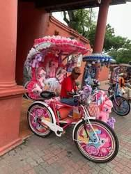 Size: 720x960 | Tagged: safe, applejack, fluttershy, pinkie pie, rainbow dash, rarity, twilight sparkle, earth pony, human, pegasus, pony, clothes, cursed image, hat, irl, kuala lumpur, malaysia, mane six, photo, plushie, sunglasses