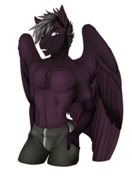 Size: 1200x1601 | Tagged: anthro, anthro oc, artist:blackblood-queen, chest fluff, clothes, commission, male, oc, oc:stygian crosswind, pegasus, pegasus oc, safe, signature, simple background, solo, transparent background, two toned wings, wings